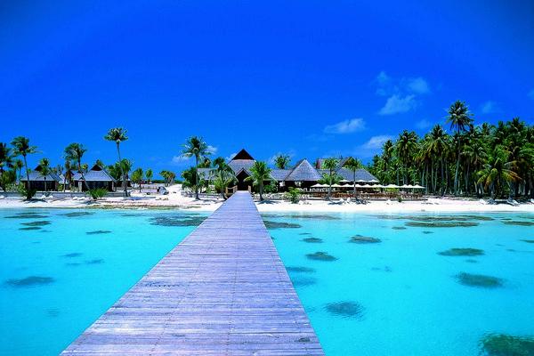 Tempting Trouble S Tales Tahiti