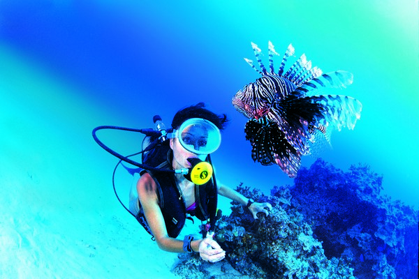 Tahiti snorkelling