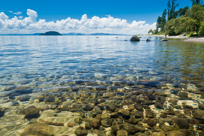 Clear waters of Lake Taupo