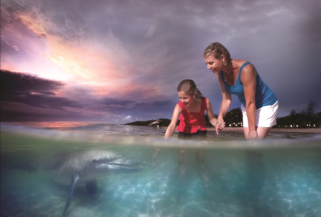 Dolphin Feeding Moreton Island - Image Credit: Tourism Events Queensland