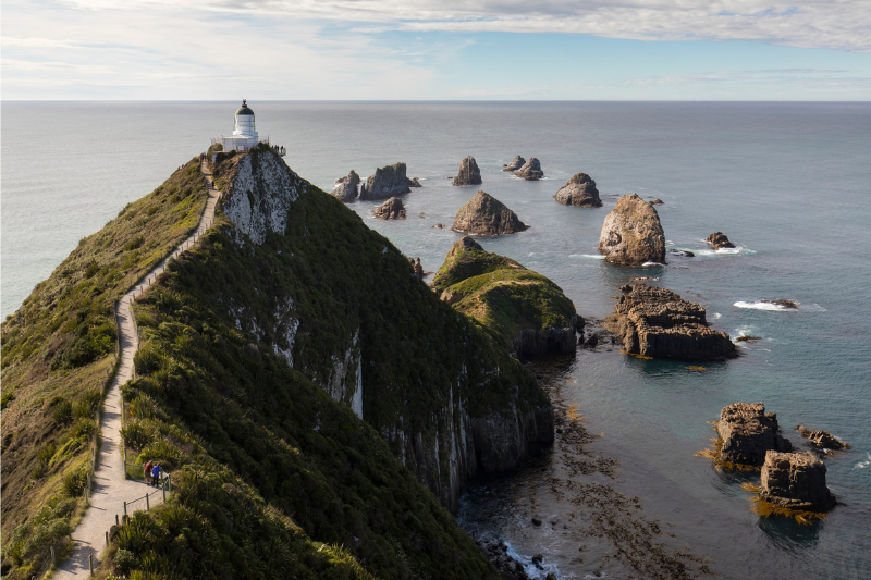Nugget Point Lighthouse, The Catlin's