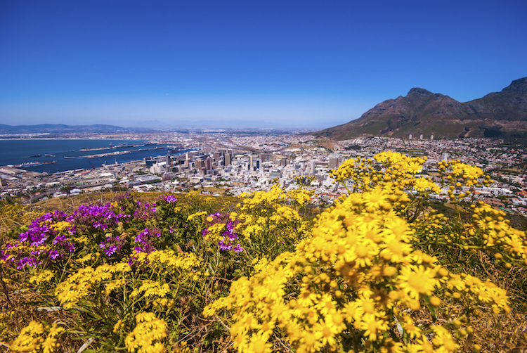 Cape Town as seen from Table Mountain. Credit: iStock.com.