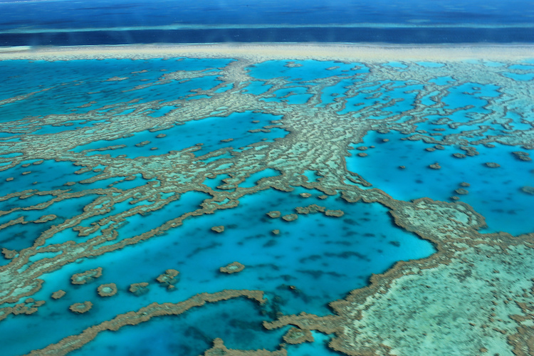 The Great Barrier Reef. Credit: FarbenfroheWunderwelt/Flickr.com