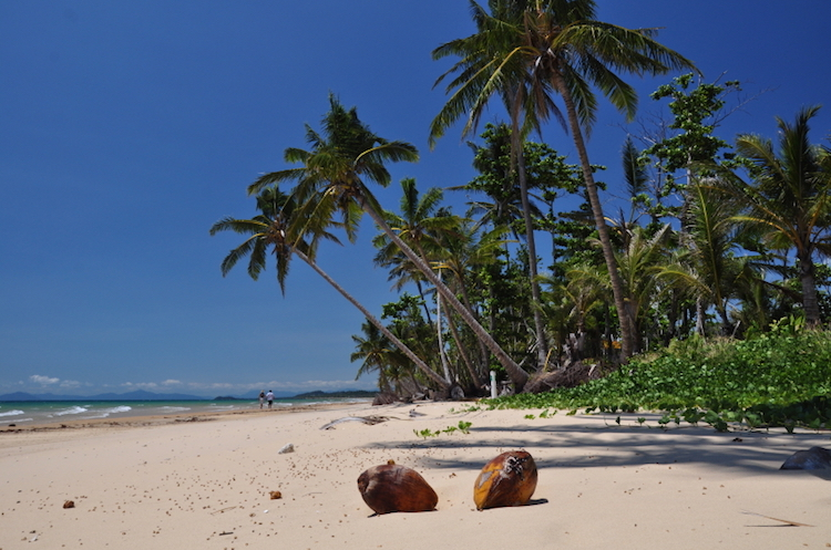 Mission Beach, Queensland. Photo: iStock.com