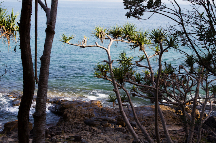 The view from the Noosa Heads Coastal Track. Photo: iStock.com.