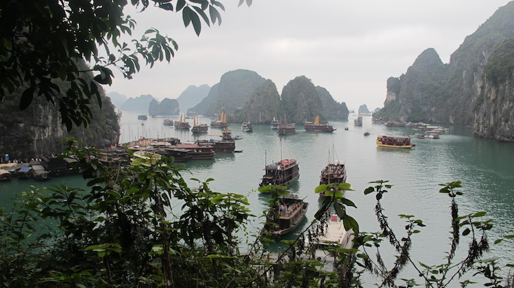 Halong Bay. Credit: Brett Atkinson