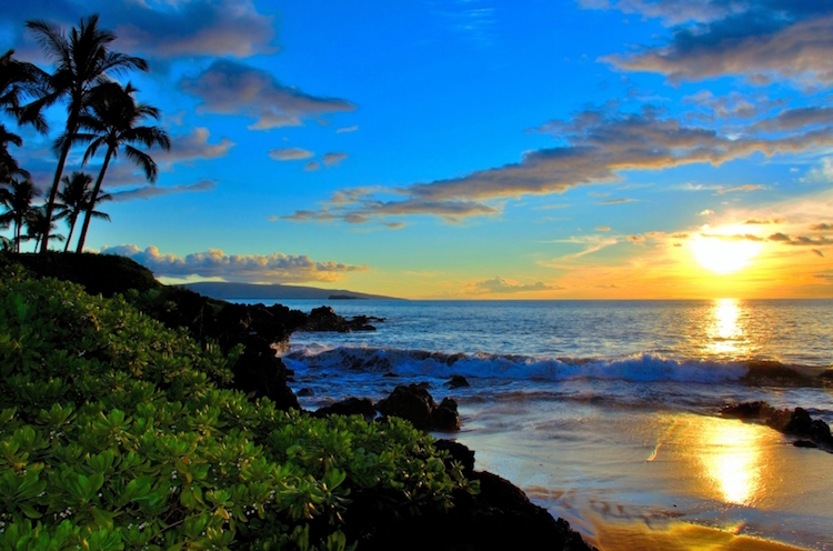 A beach on Maui. Credit: iStock.com