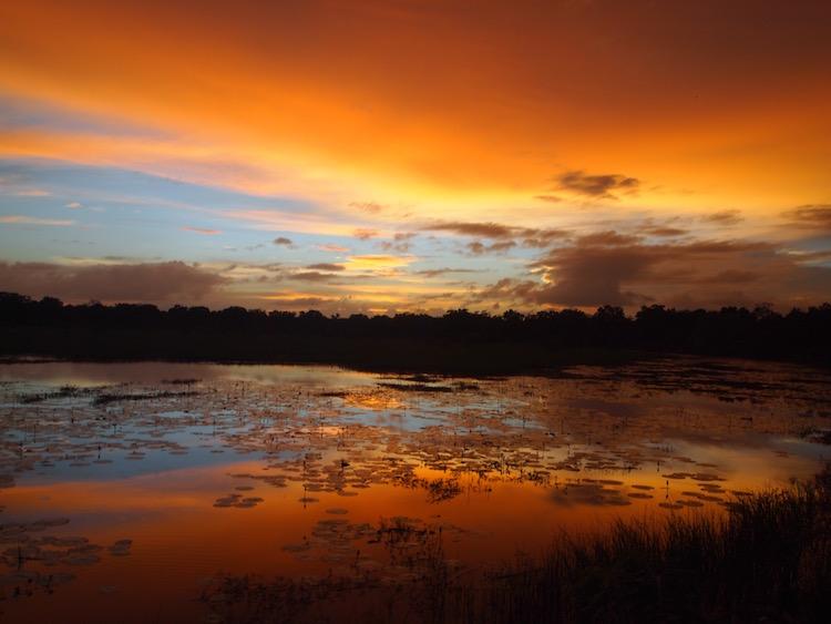 Sunset at Yala National Park. Photo: Jacqui Gibson