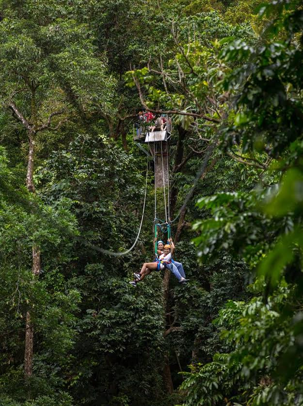 Credit Image: Jungle Surfing Canopy Tours