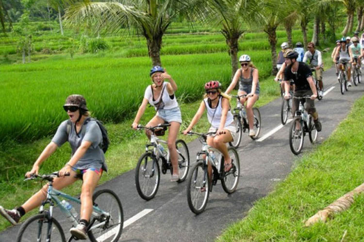 Bali cycling tour. Photo: seeingbali.com