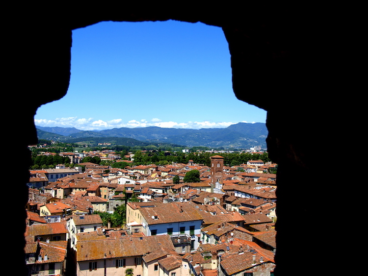 A view of Lucca, from the Torre Guinigi (Guinigi Tower). Photo: Alexia Santamaria