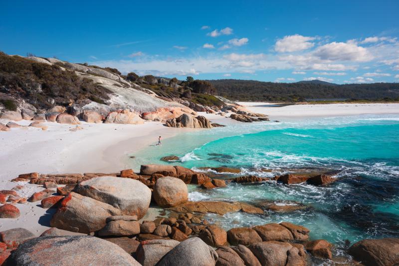 Sloop Reef, Bay of Fires, Tasmania