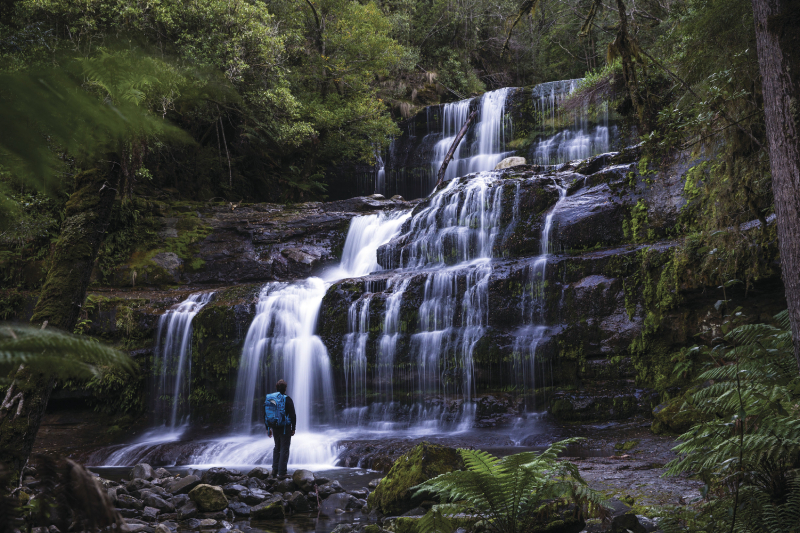 Waterfall, Mount Field National Park, Tasmania