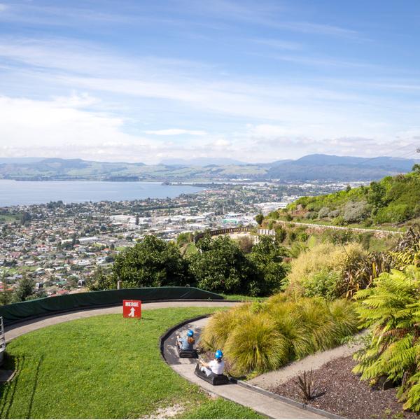 The Luge in Rotorua