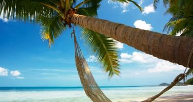 Relax and unwind in paradise