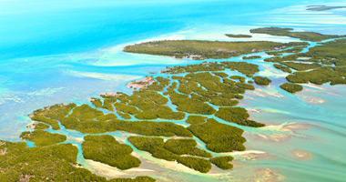 Nearby Florida Keys