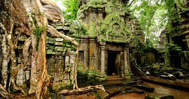Ta Prohm Temple, Angkor Wat