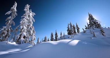 Your Own Winter Wonderland
