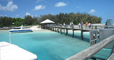Welcome to Heron Island