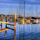 Marina, Coffs Harbour, New South Wales
