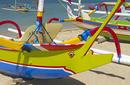 Dragonfly Boat