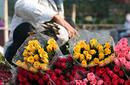Flower Vendor, Hanoi market