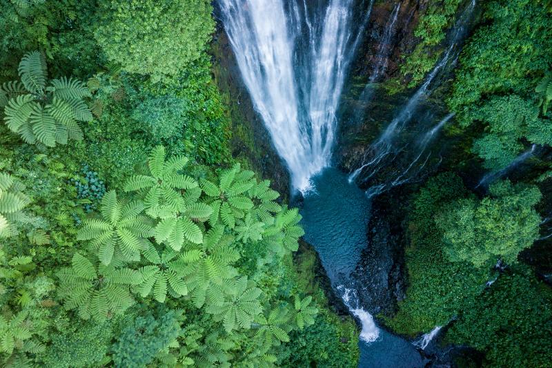 Papapapaitai Falls, Samoa