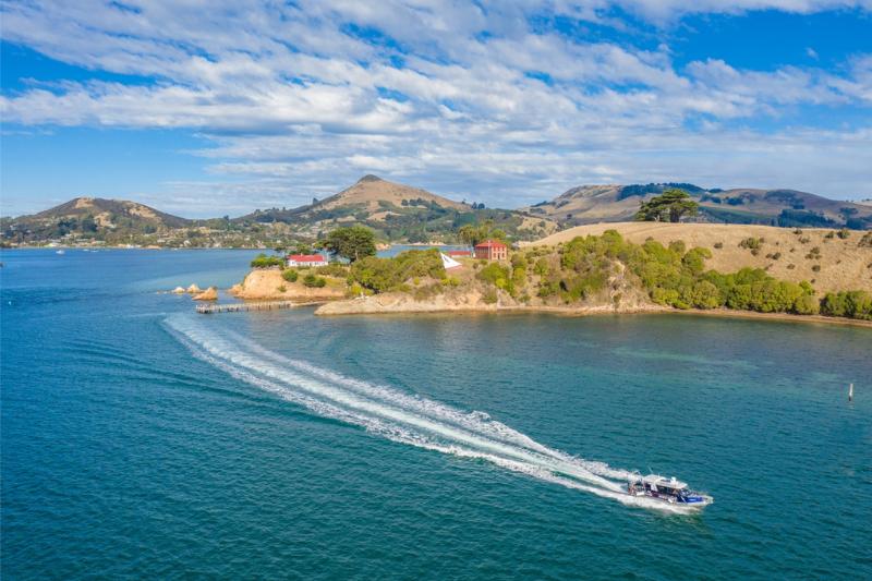 Beautiful views down Otago Harbour