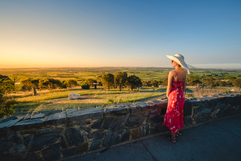 Admiring the stunning views over the Barossa Valley